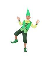 Costumatie Senior Elf Baieti 5-6 ani