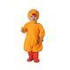 Costume Serbari Copii Costume Serbari Costumatie Pui bebelusi 12-24 luni