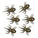 Decoratiuni si Farse Halloween Insecte si Reptile Decoratiuni si Farse | Insecte si Reptile Carabusi decorativi Set 6buc