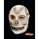 HALLOWEEN Masti Halloween Masca Halloween - Craniu fosforescent