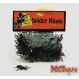 Decoratiuni si Farse Halloween Insecte si Reptile Decoratiuni si Farse | Insecte si Reptile Set 50 Mini Paianjeni