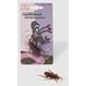 Farse Farse Scarboase Decoratiuni si Farse | Insecte si Reptile Goanga scarboasa cu magnet