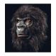 HALLOWEEN Masti Halloween Masca Gorila