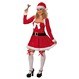 Costume Craciun Costume Craciunite Cadouri de Craciun | Costume Craciunite Costumatie Miss Craciunita XS