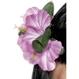 Carnaval / Petreceri Accesorii Costumatii Floare Hawaii - agrafa de par