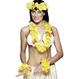 Carnaval / Petreceri Accesorii Costumatii Set accesorii Hawaii galben