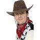Carnaval / Petreceri Palarii si Sepci Palarie Cowboy