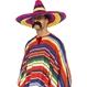 Carnaval / Petreceri Palarii si Sepci Palarie Sombrero Mariachi multicolora