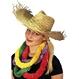 Carnaval / Petreceri Palarii si Sepci Palarie de paie Hawaiiana